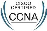 Best Cisco CCNA Training in Delhi
