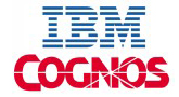 Best IBM Cognos Training in Delhi